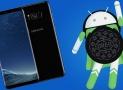 Samsung Galaxy S8 vuelve a recibir la actualización de Android 8.0 Oreo